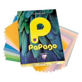 Papago Pastel A4 80 gsm Coloured Paper Pk 500