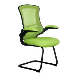 The Budapest Cantilever Chair Green