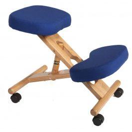 Teknik Kneeling Chair Wood Blue