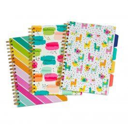 Pukka Colour Wash B5 Project Books